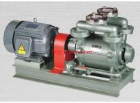 Máy bơm hút chân không vòng nước rời trục 1 cấp hiệu HANCHANG Model:HWVP-1-300/2000