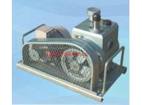 Máy bơm hút chân không vòng dầu - Model: WSVP